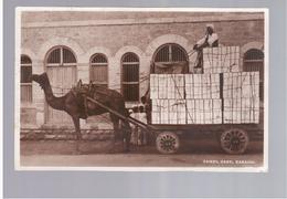 PAKISTAN Camel Cart Karachi 1925 Old Photo Postcard - Pakistan