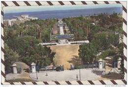 3AD1356 ALGER VUE D'ENSEMBLE DU JARDIN D'ESSAI 2 SCANS - Alger