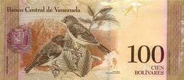 Venezuela P.93d 100 Boilvares 2011  Unc - Venezuela