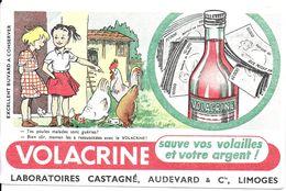 BUVARD BLOTTING PAPER PRODUIT VETERINAIRE VOLACRINE POULET VOLAILLE - Produits Pharmaceutiques