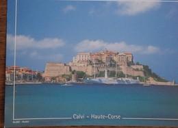 Petit Calendrier Poche 2002 Calvi Haute Corse - Tamaño Pequeño : 2001-...