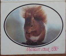 Petit Calendrier Poche 1986 écureuil  Clichy - Calendars