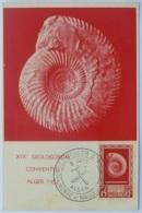 GEOLOGIE - AMMONITE (Mollusque) / Congrès XIXe GEOLOGORUM CONVENTUS / ALGER 1952 - Carte Philatélique - Expositions