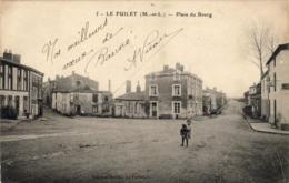 D49  LE FUILET  Place Du Bourg ( Avec Petit Garçon Ou Fille Portant Son Chien ) - Montrevault
