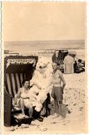 Photo Originale Déguisement & Eisbär Pour Ours Blanc Polaire En Cabine De Plage Avec La Femme De Monsieur Vers 1950 - Anonieme Personen