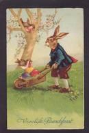 CPA Lapin Bunny Position Humaine Circulé - Other