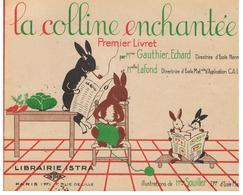 Scolaire Scolaire Lecture Pour CP La Colline Enchantée 1er Livret LA FAMILLE LAPINET Par Mme Gauthier-Echard & Lafond - Books, Magazines, Comics