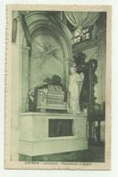 CATANIA - CATTEDRALE - MONUMENTO A BELLINI - NV  FP - Catania