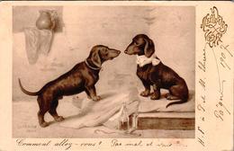 """Carte 1920 Signée """"meilleurs Voeux"""" Chien , Chiens , Teckel - Dogs"""