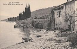 CARTOLINA NON VIAGGIATA PRIMI 900 LAGO DI GARDA MOLINO (TY2027 - Italia