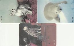 LOT 3 PREPAID PHONE CARDS ANIMALI (PY2325 - Schede Telefoniche