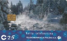 PHONE CARD POLONIA CHIP (PY1919 - Polonia