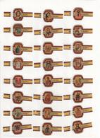 Sigarenbanden Alto Serie Ikonen 24 St - Cigar Bands