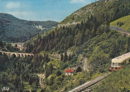 MOREZ (Jura): Les Viaducs - Autorail - Morez