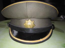 CASQUETTE OBSOLETE DE LA POLICE BOSNIAQUE. - Cascos