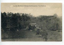 Agonac élevage Des Rousselles (poules Pondeuses) Vue Générale - France