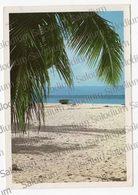 CAYO LEVANTADO  - SANTO DOMINGO - REPUBLICA DOMINICANA   - XXL CArd - Big Format - Dominicaine (République)