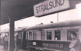 Allemagne, Chemin De Fer, Train Rheingold Express In Stralsund Bahnhof, Poméranie (4480) Photo 9x14 - Stations - Met Treinen