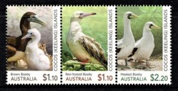 Cocos Islands 2020 Booby Birds Set Of 3 MNH - Kokosinseln (Keeling Islands)