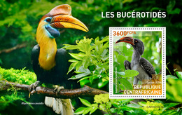 Central Africa  2019 Fauna Hornbills   S202002 - Central African Republic