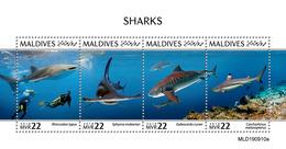 Maldives 2019 Fauna  Sharks  S202002 - Maldives (1965-...)
