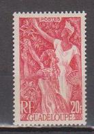 GUADELOUPE     N°  YVERT  :   211    NEUF AVEC  CHARNIERES      ( Ch  3 / 24 ) - Guadeloupe (1884-1947)