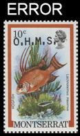 MONTSERRAT 1981 Hogfish Fish 10c OVPT:OHMS ERROR:ovpt.shift - Montserrat