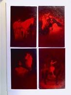 Frau Mit Pferd, Roter Karton, 4 Foto-AK, Konvolut, Ungelaufen - Zonder Classificatie