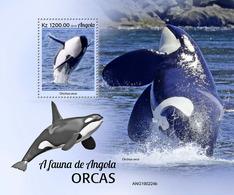Angola 2019  Fauna  Orcas ,whales  S202002 - Angola