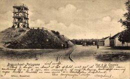 BRASSCHAAT - Polygone - 1903 Verzonden - Vue à La Coupole -   ANTWERPEN // ANVERS. Belgica//Belgique - Antwerpen
