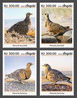 Angola 2019  Fauna  Sandgrouses (Birds)  S202002 - Angola