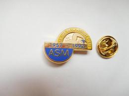 Superbe Pin's En Zamac , Natation , ASM ,  Association Sportive Michelin , Signé Decat - Natation