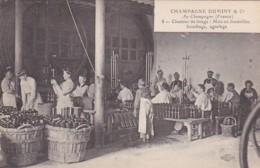 279724Champagne Duminy & Co Chantier, Chantier De Tirage : Mise En Bouteilles, Bouchage, Agrafage Nr. 8 - Wijnbouw