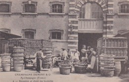 279728Champagne Duminy & Co Chantier, Réception Et Choix Des Bouteilles Nr. 6 (zoir Coins) - Wijnbouw
