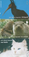 Turkey, TR-TT-N-0111 - 0113, Set Of 3 Cards,  Endangered Species 2, Ibis, Castor, Cat, 2 Scans. - Turchia