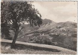 DAV : Pyrénées  Orientales : La  Tour  Du  Mire  à  LA  PRESTE , Prats De  Mollo - France