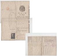 Passeport Belgique Liège 1920 - Decrees & Laws