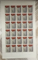 VEL 2  Bfr  Plaat 1 - Full Sheets
