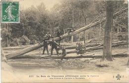 VINVENNES : LE BOIS APRES LE CYCLONE - Vincennes