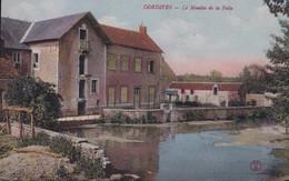 45-DORDIVES LE MOULIN DE LA FOLIE - Dordives