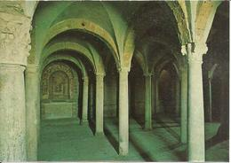 Tuscania (Viterbo) Basilica Di San Pietro, Cripta, Basilique De St. Pierre, La Crypte, St. Peter's Basilica, The Crypt - Viterbo