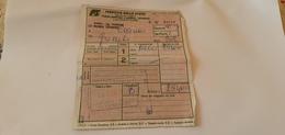 BIGLIETTO TRENO AGENZIA TRIREMIS DA ROMA TERMINI A CECINA 1989 - Europe