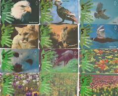 Turkey, TR-TT-N-0170 - 0181, Set Of 12 Cards,  June 5th 2001 - World Environment Day, Eagle, Seal, Birds, Flow, 2 Scans, - Turchia