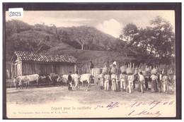 BRAZIL - DEPART POUR LA CUEILLETTE - TB - Autres