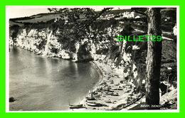 BEEP BEACH, UK - ANIMATED - TRAVEL IN 1955 -  REAL PHOTOGRAPH -  HARVEY BARTON & SON LTD - - Other