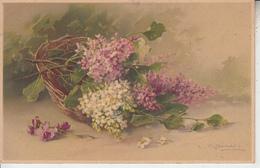 Illustrateur C. KLEIN  - Corbeille Avec Des Fleurs PRIX FIXE - Klein, Catharina