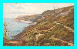 A840 / 231  Babbacombe Slopes Raphael Tuck Oilette - Angleterre