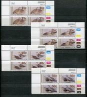 Bophuthatswana Mi# 239-42 Zylinderblocks Postfrisch/MNH Controls - Fauna Birds - Bophuthatswana