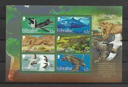 Gibraltar 2013 Endangered Animals Sheetlet MNH - Ohne Zuordnung