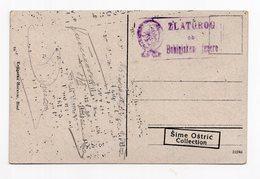 1922 KINGDOM OF SHS, SLOVENIA, SAVICA, WATERFALL, USED, ILLUSTRATED POSTCARD - Yugoslavia